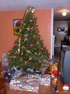 on sale 17b82 aeb8e Ensuite, James choisit un « Père Noël », pour distribuer les cadeaux. Tim  est désigné et se voit offrir le chapeau.